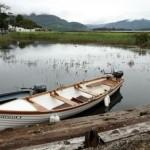 Немец пытался осушить озеро ради утонувшего смартфона